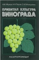 Книга Привитая культура винограда