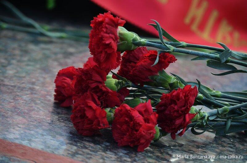 День неизвестного солдата, Саратов, Воскресенское кладбище, 03 декабря 2014 года
