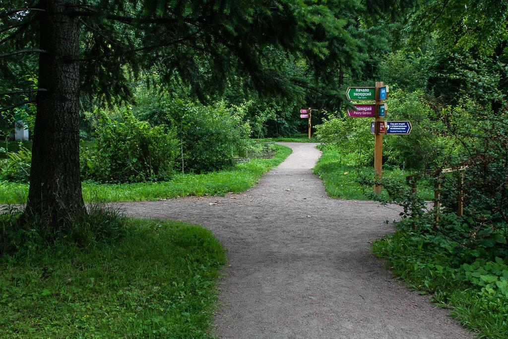 В парке-дендрарии