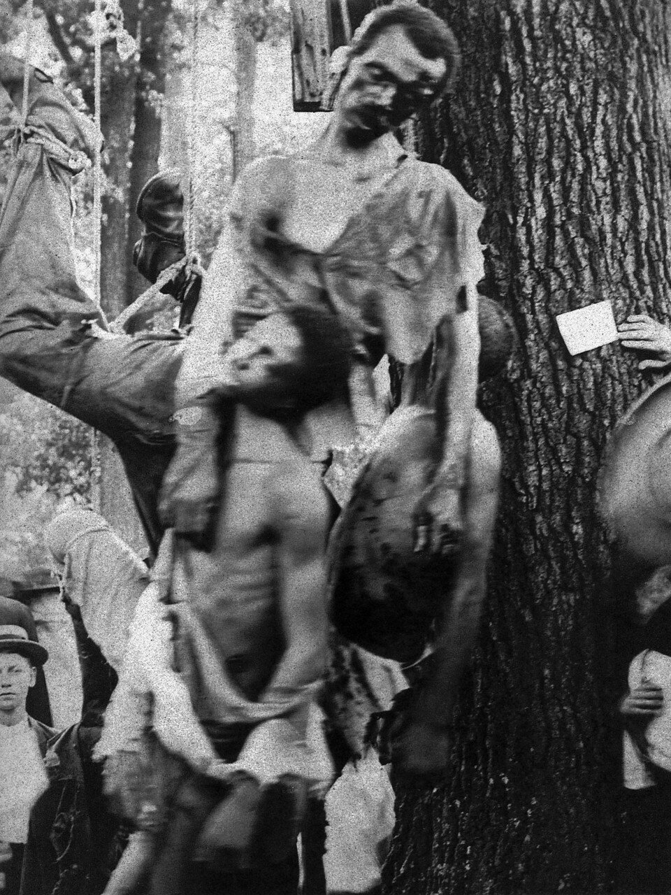 1906.  Линчевание пяти негров в Солсбери, Северная Каролина