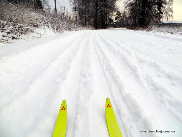 лыжи первый раз в сезоне вышла на лыжах.JPG