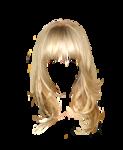 hair63.png