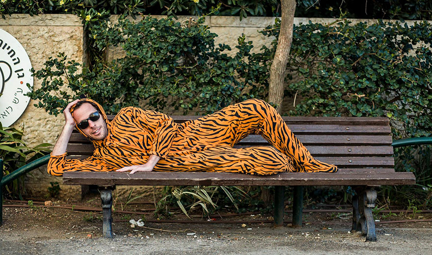 «Изображу бездомного тигра». Тигр Айра.