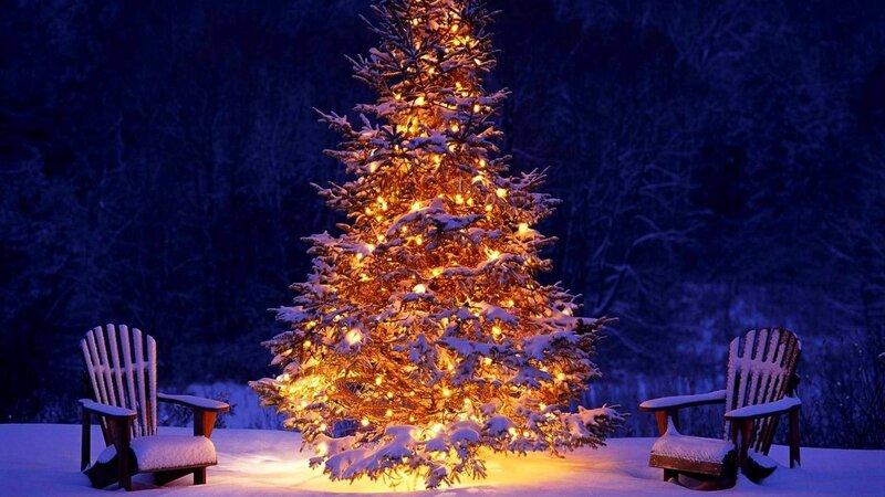 Новогодние елки обои на рабочий стол