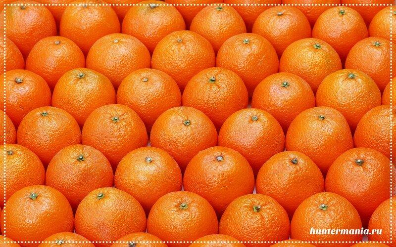 Чем полезны апельсины и как их использовать в кулинарии