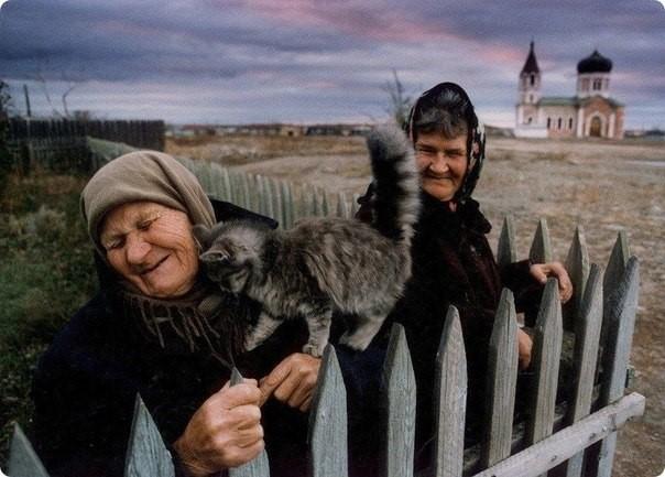 Сострадание к животным так тесно связано с добротой характера... Шопенгауэр