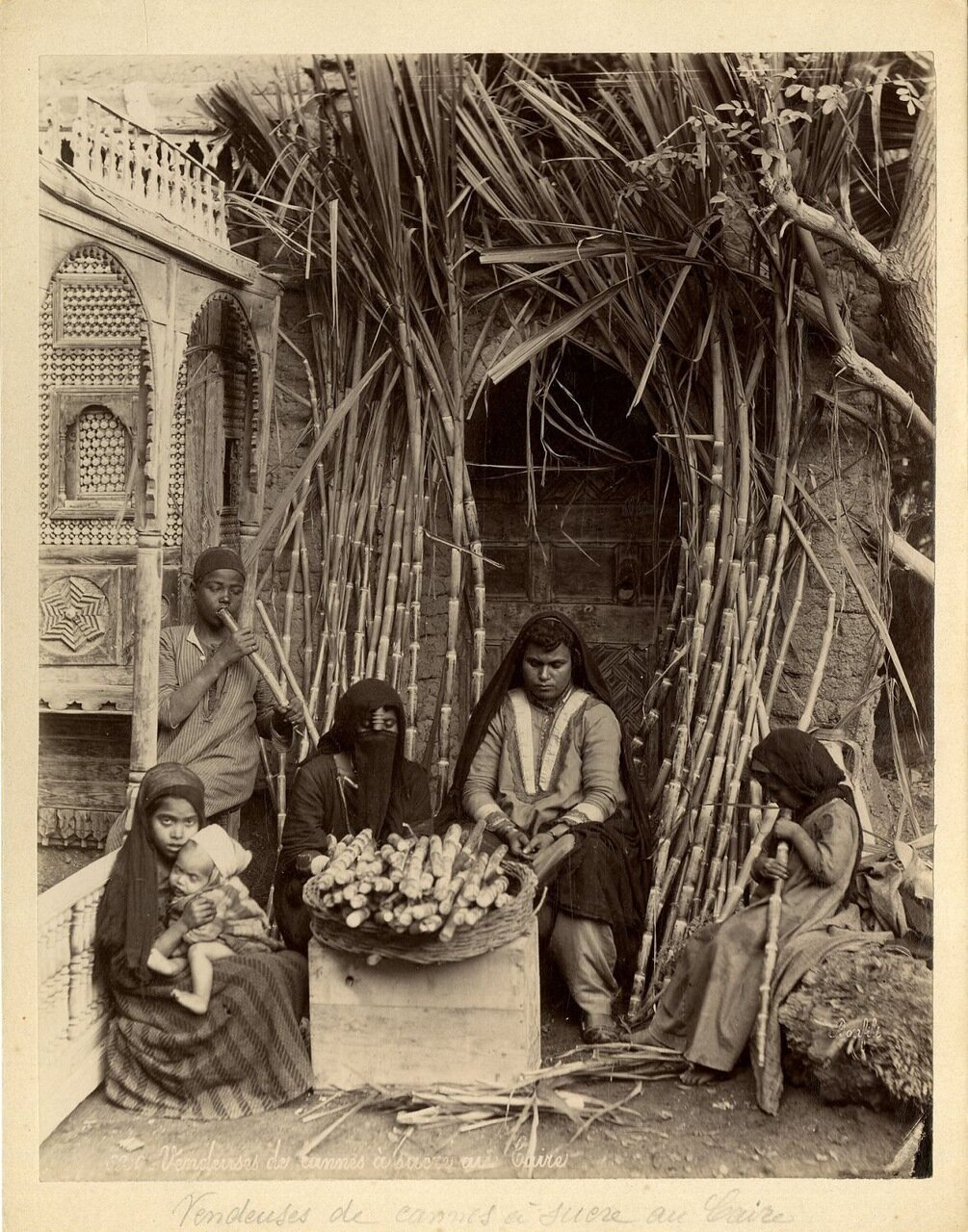 Торговки сахарным тростником в Каире
