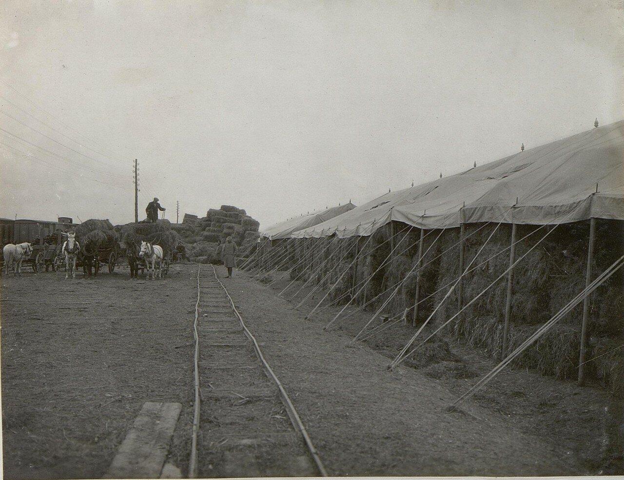 Рудня. Сенной склад  25 пехотной дивизии