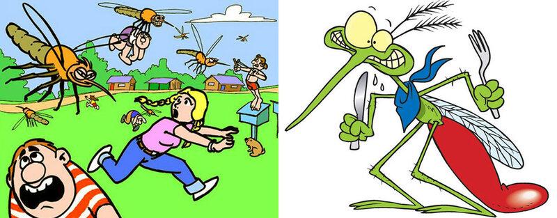 13.Комары