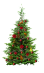 damayanti_happy_christmas_freebie_13.png