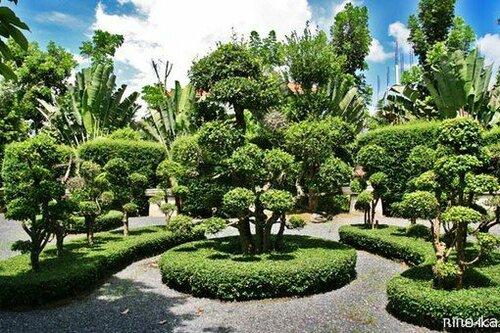 ботанический сад.jpg