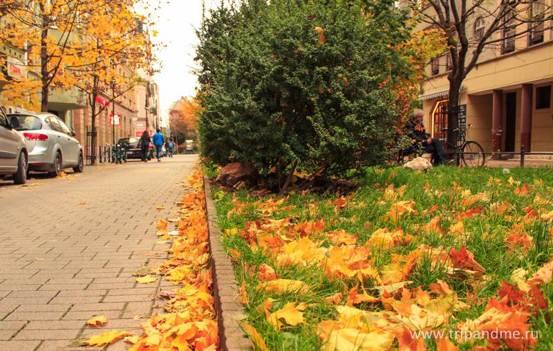 Осенний Будапешт 10.jpg