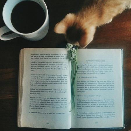 Книга 58 книг, которые научат тебя мыслить шире: