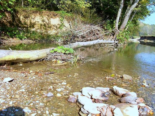 12 октября 2008, под Горячим Ключом, на реке (132).JPG