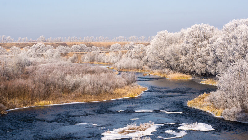 Ноябрь. Река Кшень.