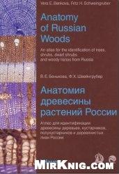 Книга Анатомия древесины растений России