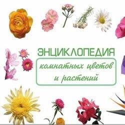 Книга Энциклопедия комнатных цветов и растений