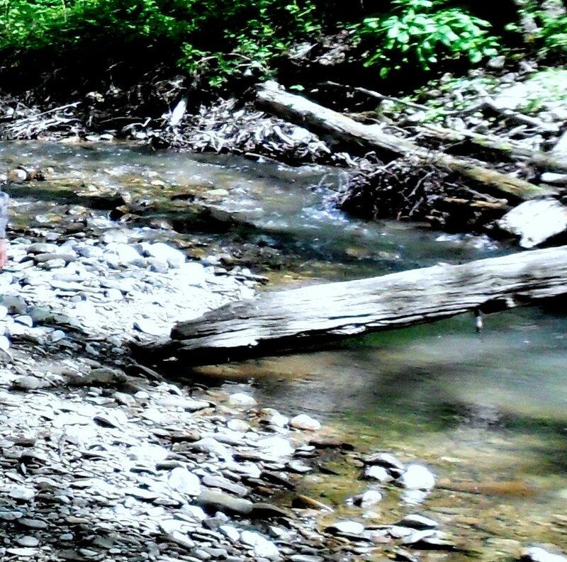 У реки ... SAM_7700-2.JPG