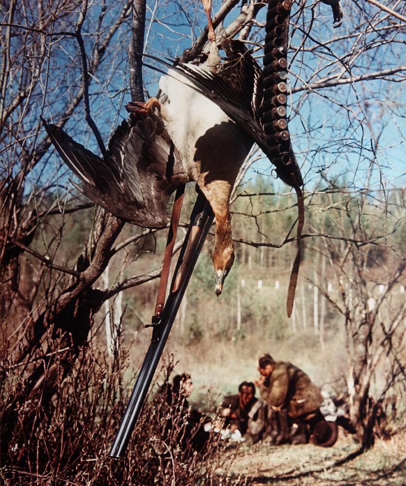 1952. Охотники на привале