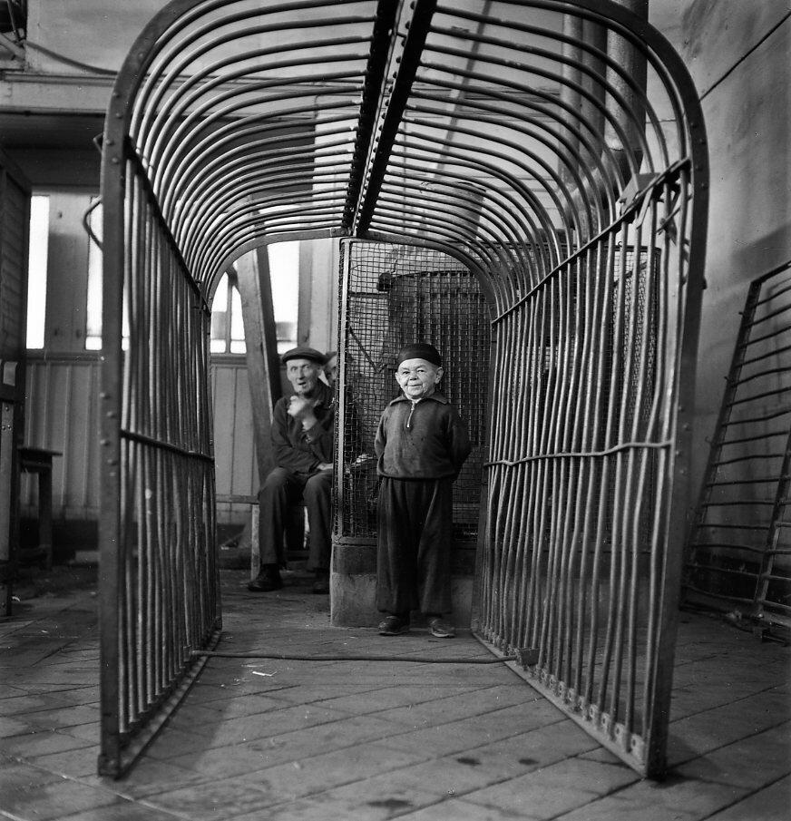 1949. Лилипут из цирка Пиндера
