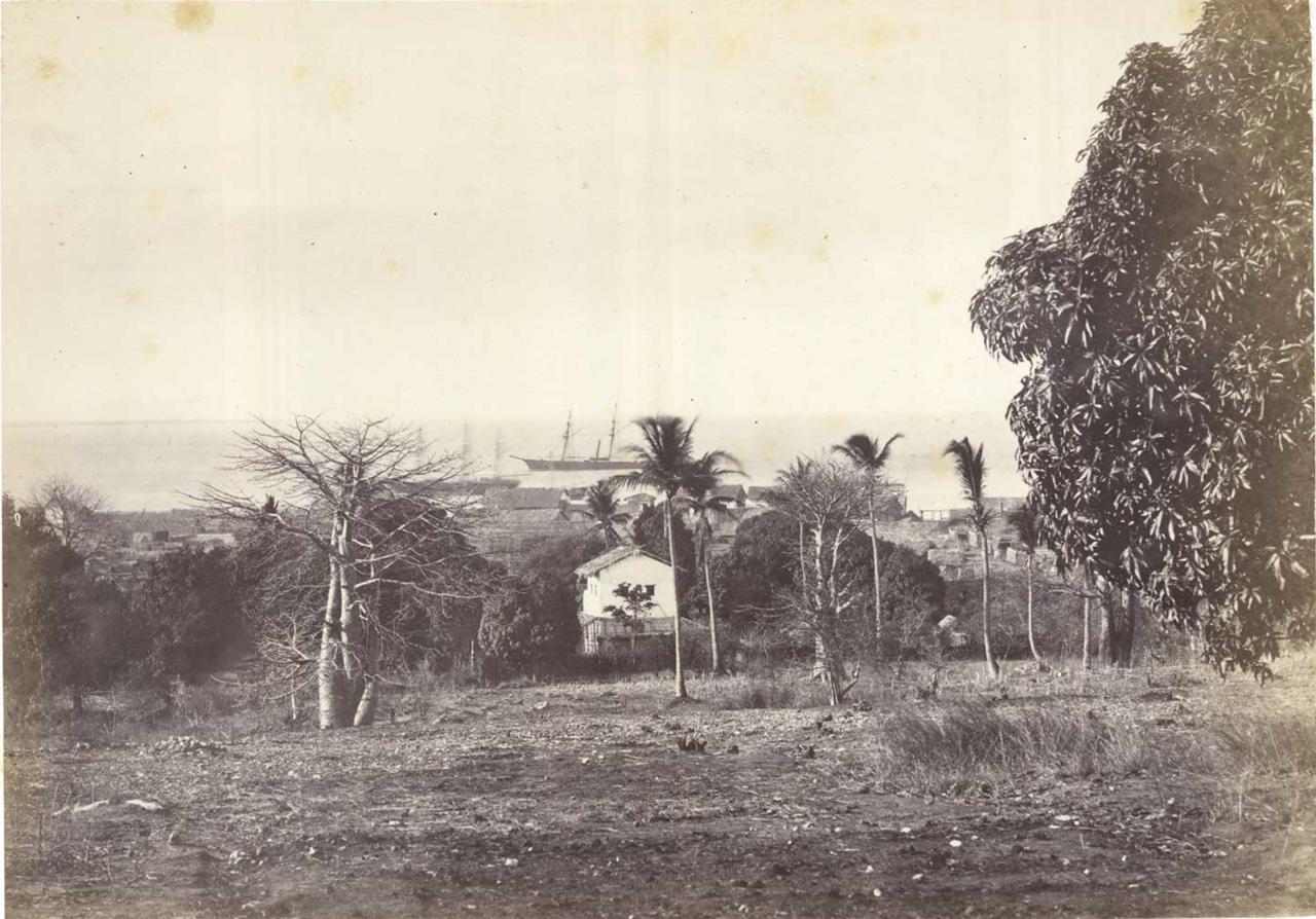 28. Виды жилищ и залив Бумбетука