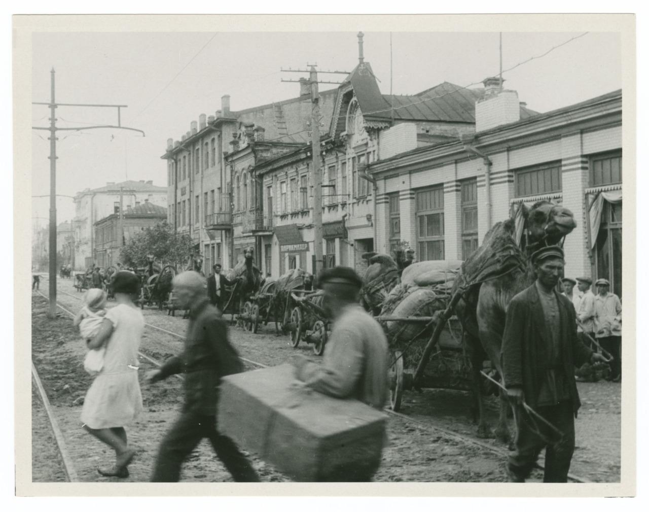 Working camels in Kazan', 19300.jpg