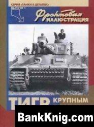 Книга «Тигр» крупным планом