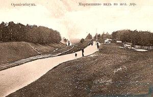 Мартышкино