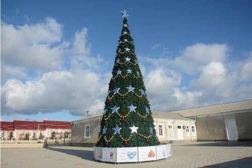 В одном из сёл Гагаузии установили 15-метровую новогоднюю ель