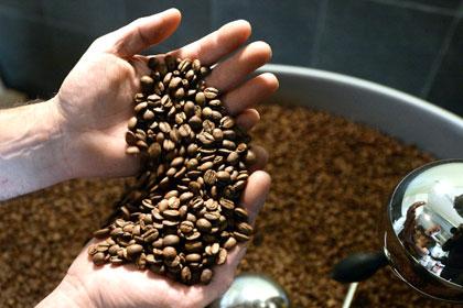 В партии бразильского кофе нашли тридцать три килограмма кокаина