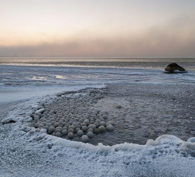 явление на берегу Финского залива