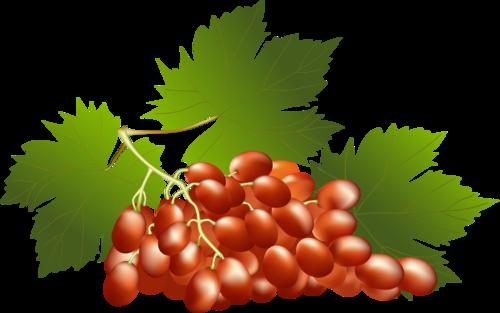 виноград (14).png