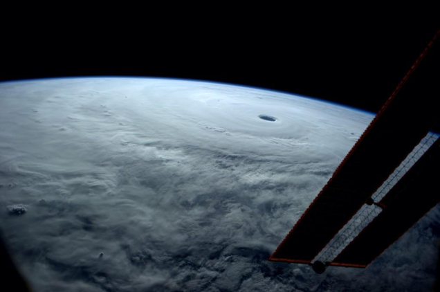 2014 Science images of the Year280.png