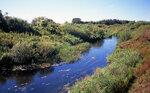 Река Пёт