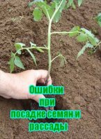 Книга Ошибки при посадке семян и рассады (2011) SATRip avi 322Мб