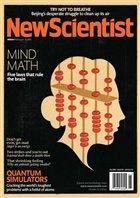 Журнал New Scientist (9 февраля), 2013 / US