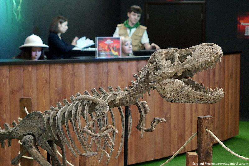 09. Детский мир. Динозавры. 02.04.15.01..jpg