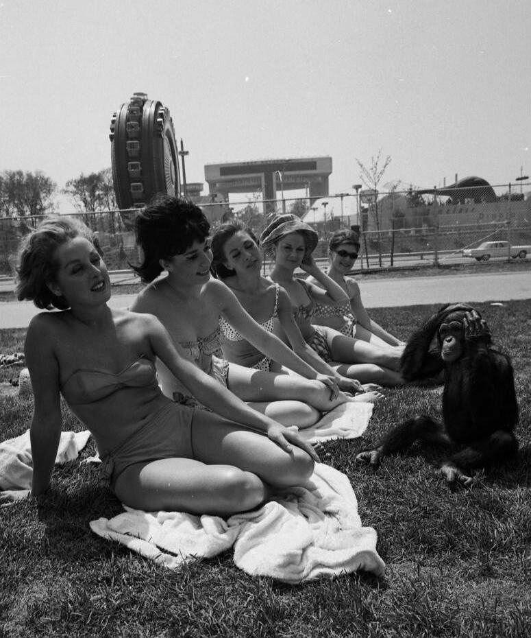 New York World's Fair, 196480.jpg
