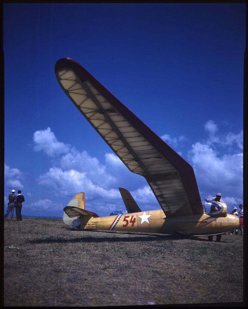 Goppingen Go 3 Minimoa (Sailplane) named 'Dove of Peace' (rn NC16923), possibly Elmira, NY, c.1938