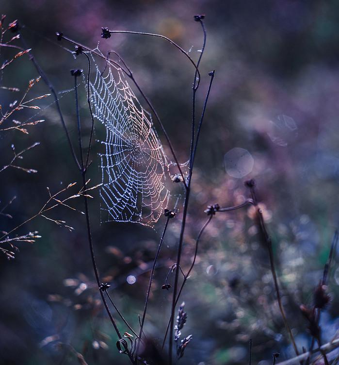 Фото: Arek Weglewski Фото: Любовь Матвеева