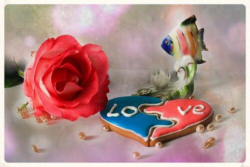 Про рыбку, Любовь и розу