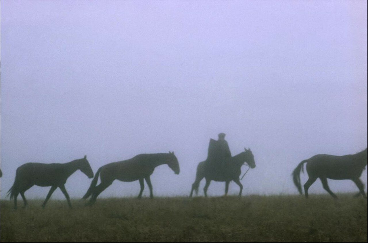 Кавказ. Пастух на высокогорном пастбище