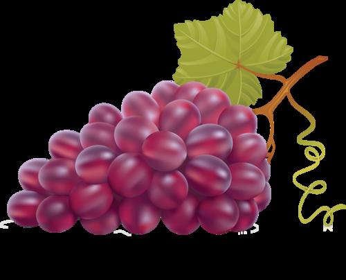 виноград (36).png