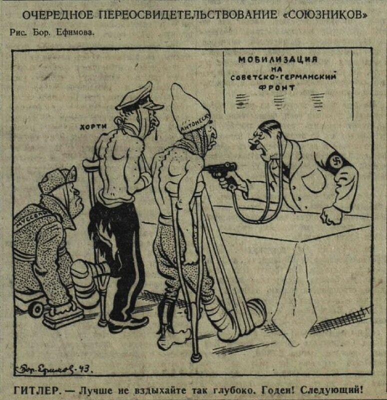 «Красная звезда», 27 января 1943 года, союзники Гитлера