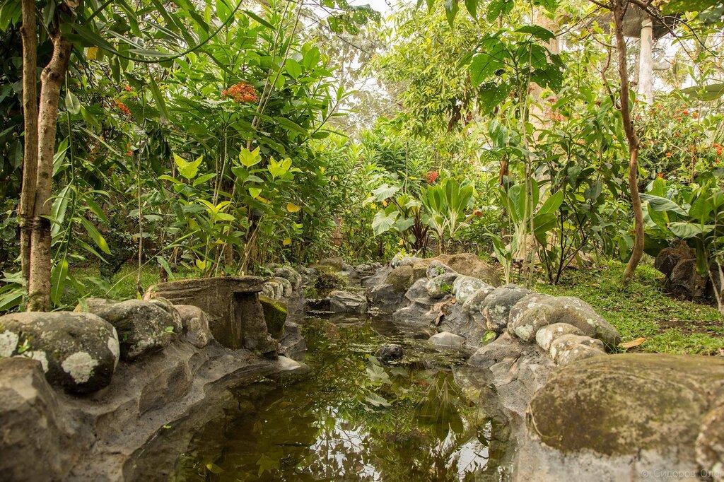 Бали ч3-102.jpg