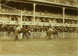 Участники скачек на приз Мидл-Парк-Плет на лошадях Дарвин и Барокко.