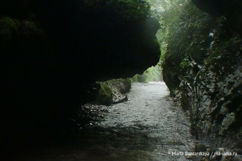 Мамедово ущелье, Краснодарский край, Сочинский Национальный парк, 15 июля 2014 года