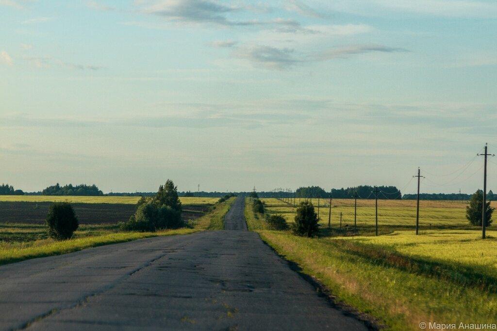 Дорога в сторону Старой Рязани