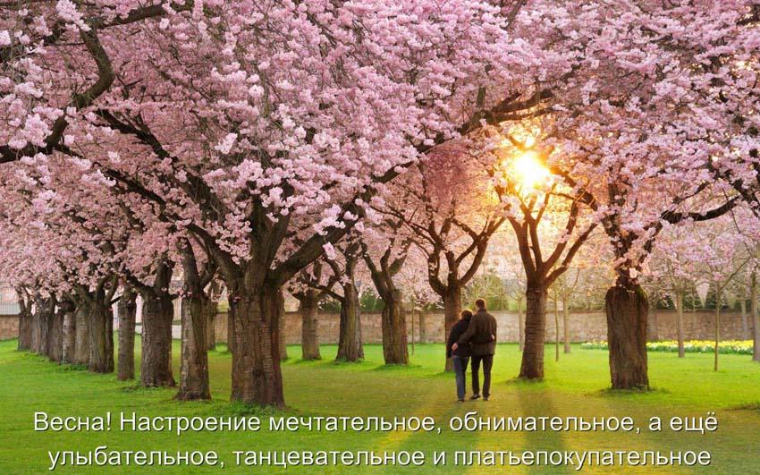 Картинки с надписью | Статусы о весне