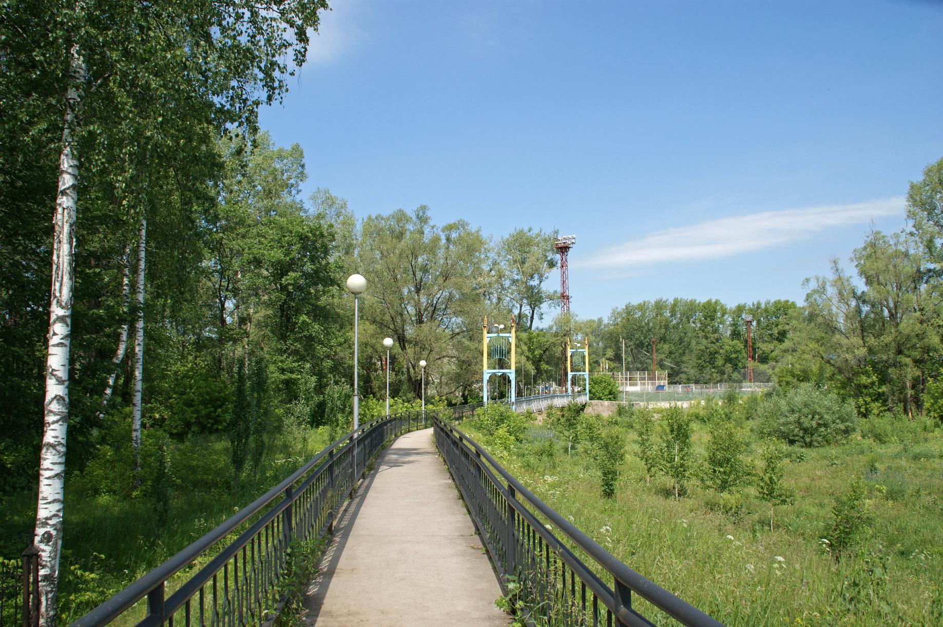 Пешеходный мостик от храма к парку имени Пилютова (02.02.2015)